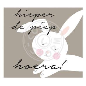 Wenskaart 'Hieperdepiep Hoera!' door Coos Storm